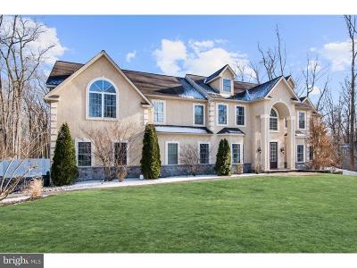 Swedesboro Single Family Home For Sale: 127 Erica Court
