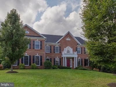 Ashburn Single Family Home For Sale: 42637 Cochrans Lock Drive
