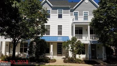 Dorchester County Townhouse For Sale: 113 Sailors Lane