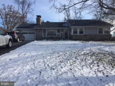 Gilbertsville Single Family Home For Sale: 2234 Big Road