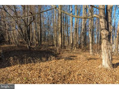 Bucks County Residential Lots & Land For Sale: 0000 Route 202