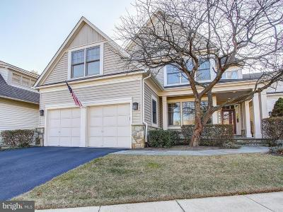 Reston Single Family Home For Sale: 1326 Red Hawk Circle