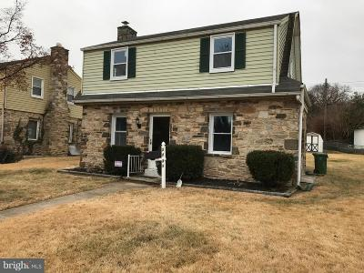 Baltimore Single Family Home For Sale: 3731 Rueckert Avenue