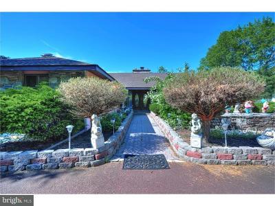 Harleysville Single Family Home For Sale: 378 Oak Drive
