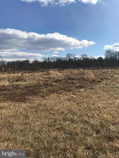 Culpeper Commercial For Sale: 16154 Brandy