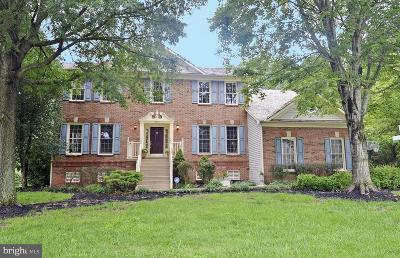 Virginia Run Single Family Home For Sale: 15555 Smithfield Place