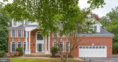 Herndon Single Family Home For Sale: 848 Spring Knoll Drive