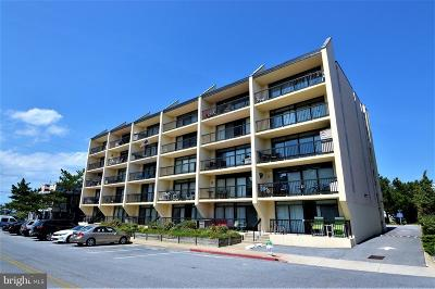 Ocean City Condo For Sale: 12 42nd Street #303