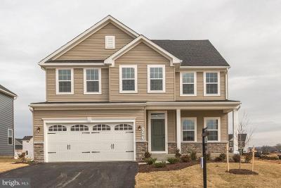 New Market Single Family Home For Sale: 9708 Braden Court