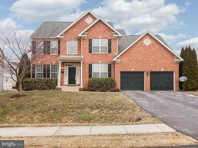 Hagerstown Single Family Home For Sale: 18322 Misty Acres Drive