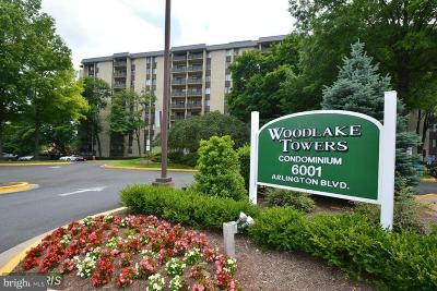 Falls Church Condo For Sale: 6001 Arlington Boulevard #T15