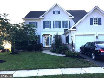 Lansdowne On The Potomac Single Family Home For Sale: 43624 Habitat Circle