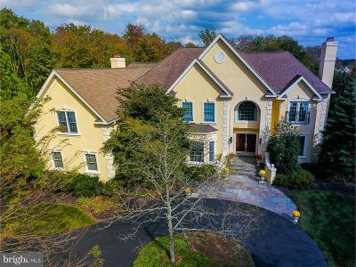 Bucks County Single Family Home For Sale: 5709 Valley Stream Drive