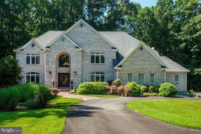 Darnestown Single Family Home For Sale: 15604 Indian Run Court