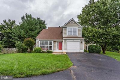 Leesburg Single Family Home For Sale: 463 Foxridge Drive SW
