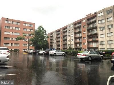 Alexandria Condo Active Under Contract: 401 Armistead Street #503