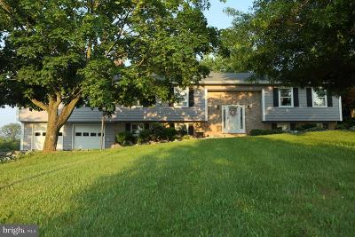 Single Family Home For Sale: 12813 Bunker Hill Road