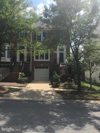 Chantilly Rental For Rent: 25352 Herring Creek Drive