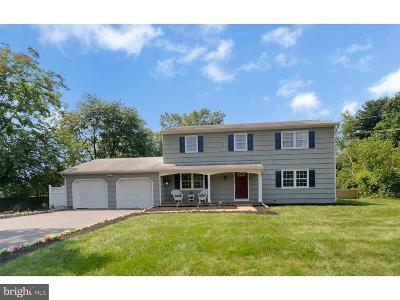 Princeton Junction Single Family Home For Sale: 100 Hightstown Road
