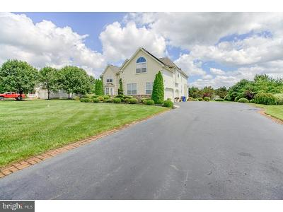 Franklinville Single Family Home For Sale: 100 Sandra Way