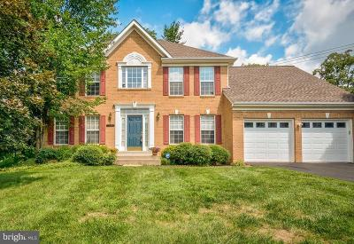 Herndon Single Family Home For Sale: 12900 Cinnamon Oaks Court