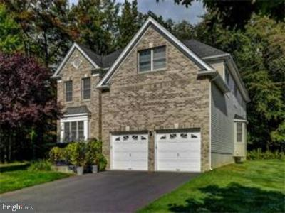West Windsor Single Family Home For Sale: 63 Greylynne Drive