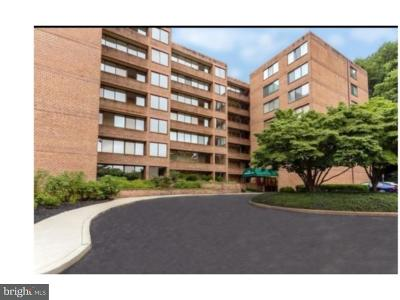 Bala Cynwyd Condo For Sale: 19 Rock Hill Road #6E