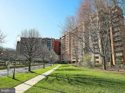 Annandale, Falls Church Condo For Sale: 2230 George C Marshall Drive #223