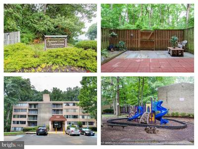 Annandale, Falls Church Condo For Sale: 4345 Ivymount Court #2