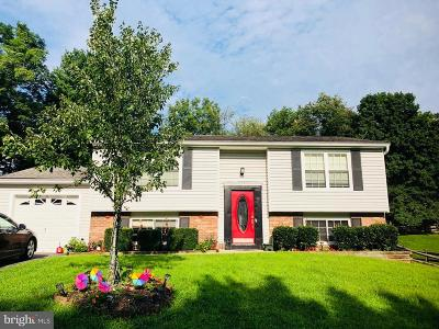 Gaithersburg Single Family Home For Sale: 24221 Club View Drive