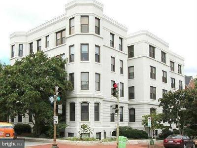 Washington DC Condo Active Under Contract: $401,900