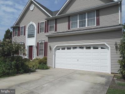 Mount Airy Single Family Home For Sale: 1004 Crimson Cloud Court