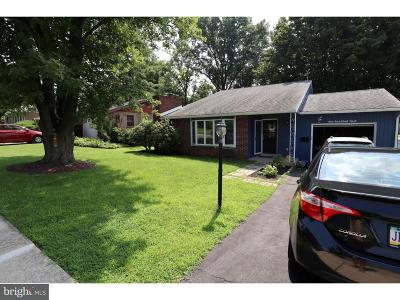Sinking Spring Single Family Home For Sale: 104 Oberlin Avenue