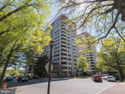 Chevy Chase Rental For Rent: 5500 Friendship Boulevard #2015N