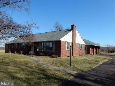 Bucks County Single Family Home For Sale: 291 Elephant Road
