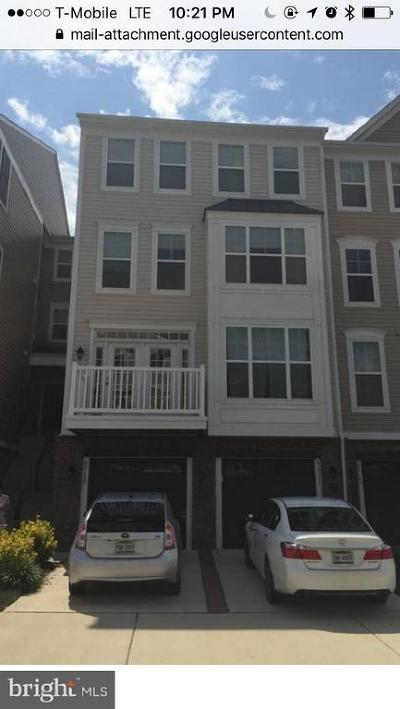 Aldie Rental For Rent: 42169 Canary Grass Square