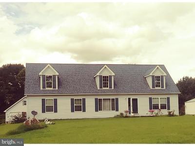 Birdsboro Single Family Home For Sale: 427 Old River Road