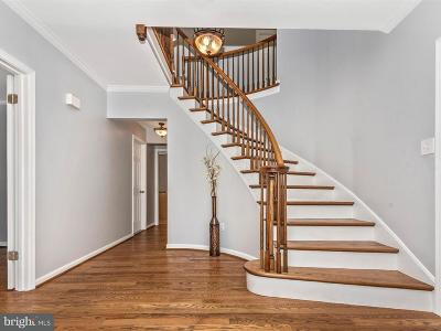 Brookeville, Olney Single Family Home For Sale: 4112 Horatio Court