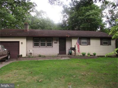 Pine Hill Single Family Home For Sale: 128 E 11th Avenue