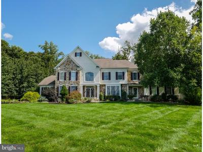 Bucks County Single Family Home For Sale: 5 Pickering Drive