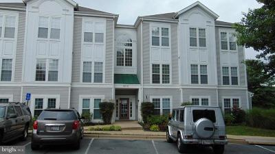 Gaithersburg Condo For Sale: 9810 Leatherfern Terrace #302-268