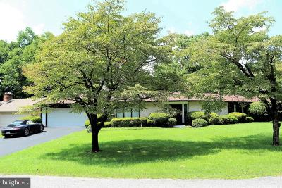 Hagerstown Single Family Home For Sale: 13126 Woodburn Drive