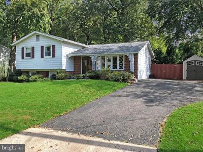 Gaithersburg Single Family Home For Sale: 408 Woodland Road