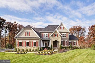 Loudoun County Single Family Home For Sale: Marbury Estate Drive