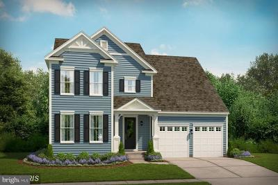 Loudoun County Single Family Home For Sale: Corriedale Place