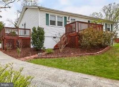 Strasburg Single Family Home For Sale: 336 N. Massanutten Street