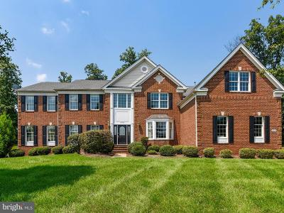 Ashburn Single Family Home For Sale: 20049 Boxwood Place