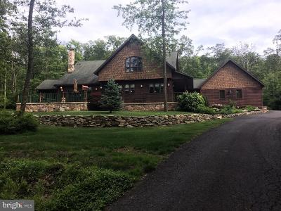 Single Family Home For Sale: 786 High Mountain Road
