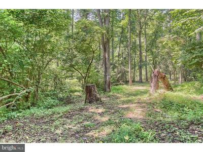 Mohnton Residential Lots & Land For Sale: 886 Buck Hollow Road
