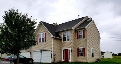 Dover Single Family Home For Sale: 2507 Village Road